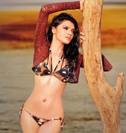 hot-sexy-desi-bollywood-hindi-masala-actress-item-girl-mona-sherlyn-chopra