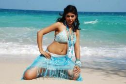 Tamil-Telugu-Malayalam-Kannada-Actress-Pics
