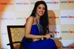 desi-indian-bollywood-actress-asin-aasin-dinner-tatasky-event