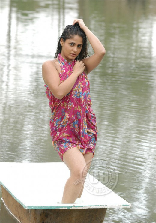 Largest Collection of Bathing Dress Photos of Indian Heroines  south indian movies of telugu tamil kannada