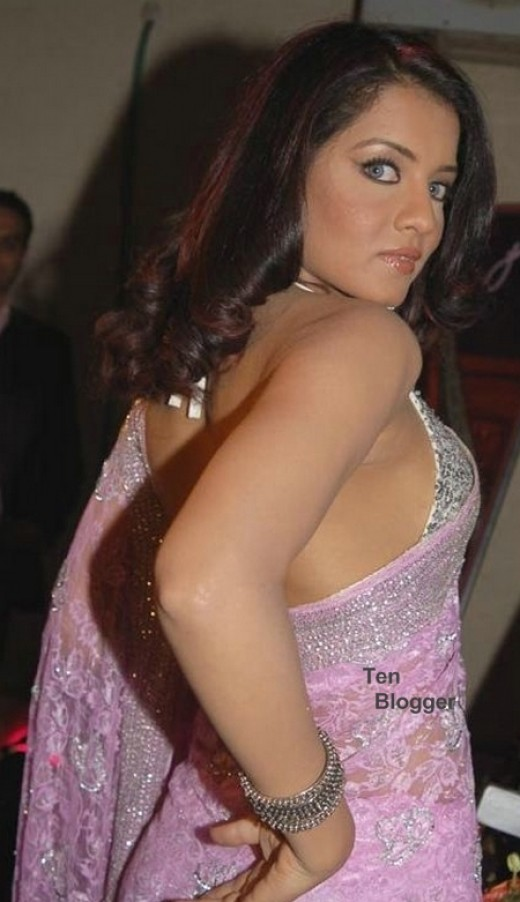 Celina Jaitly shows off her sexy pink saree