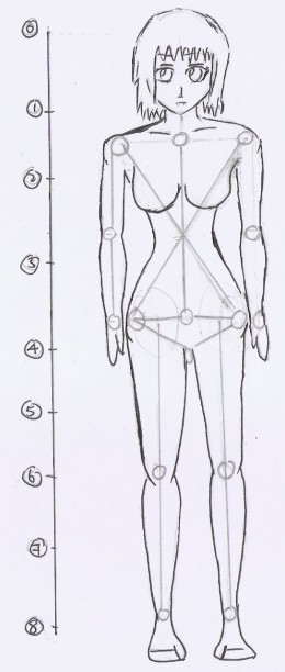 Women Body Outline