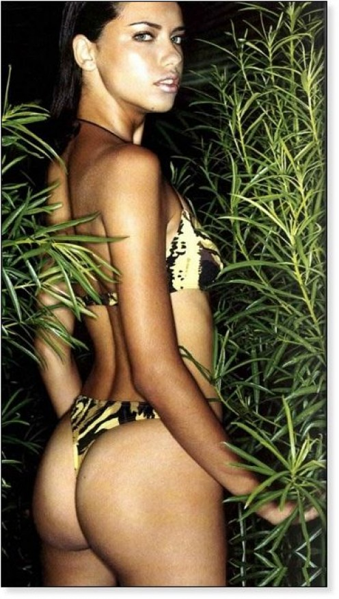 Sorry, Adriana lima butt opinion