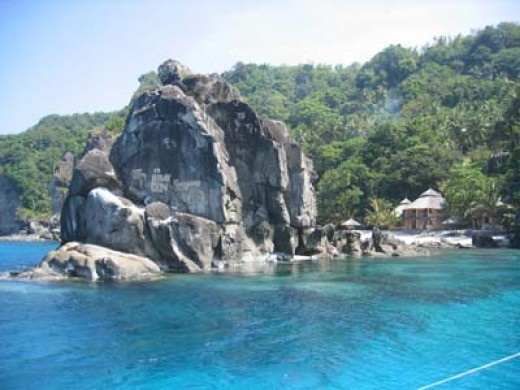 Apo Island Resort Beach