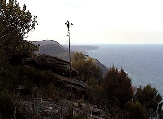 The NORTHERN ILLAWARRA and ROYAL NATIONAL PARK COASTLINE. The RNP is the 2nd oldest declared park after YELLOWSTONE PARK in the USA. This view would not have changed much since Captain James Cook sailed up the Eastern Coast of Australia in 1770.