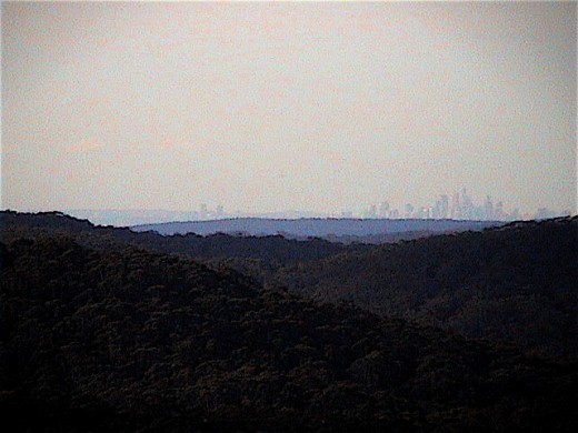 Here is a distance view to the north of the SYDNEY SKYLINE. Taken from Mt Mitchell, Illawarra Esarpment at Stanwell Park. The Royal National Park is in between.