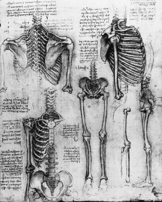 Leonardo Da Vıncı'nin büyüleyici eskizleri...