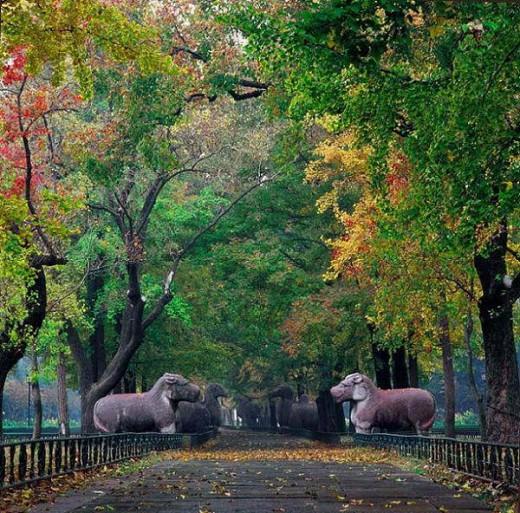 Nanjing has many parks