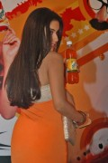 indian-bollywood-actress-mallu-asin-aasin-hot-sexy-posing-with-mirinda-cool-drink