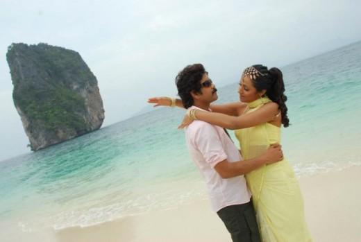 nagarjuna-with-tamil-telugu-actress-trisha-wellknown-for-bathroom-video