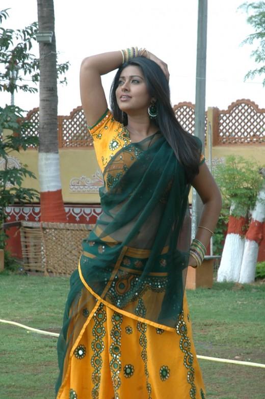 actress-snehaa-sineha-sneka-snega-snaga-sneha-hot-sexy-tamil-telugu-indian-desi-heroine-saree