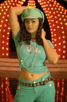 tamil-telugu-actress-hot-sexy-smiling-sneha-sineha-sneka-snega-half-saree