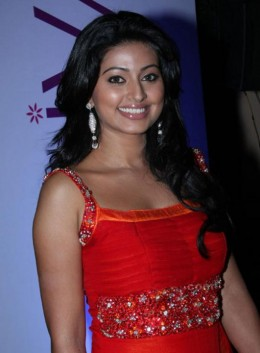 hot-sexy-tamil-telugu-star-sneha-sneka-snega