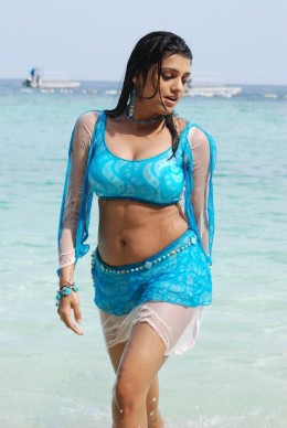hot-sexy-desi-indian-actress-photo-wet-drenched-beach
