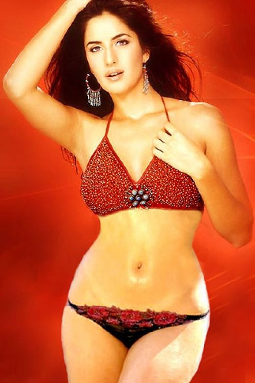 Katrina Sexiest Bikini Pic