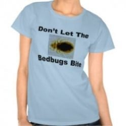 Ack! Bed Bugs! How to Get Rid of Them