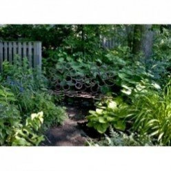 Best Plants for a Wooded Shade Garden