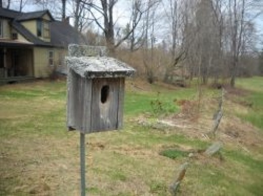 Bluebird House at Royalton Bed and Breakfast