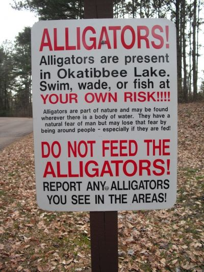 Florida Alligator Sign (used with permission from CE Wallace)