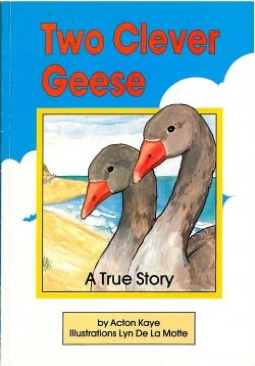 Two Clever Geese - Acton Kaye