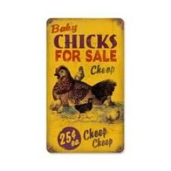 Search online for local chicken resources.