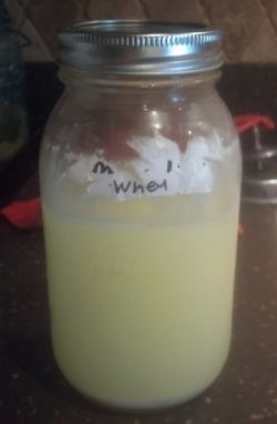Whey that is leftover from making cheese can be saved for several days in the fridge or several months in the freezer.