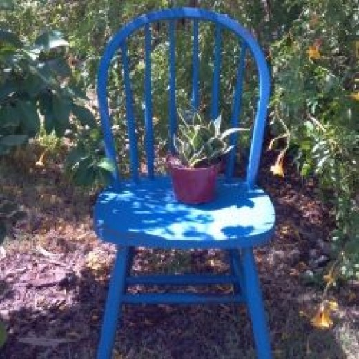 Revive old furniture using milk paint finishes.