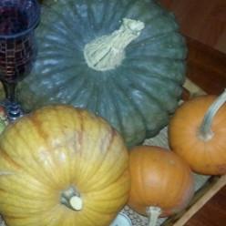 Homemade Pumpkin Puree for Pumpkin Pie & Your Favorite Recipes