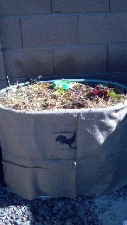 Photo credit: Worm Bed by The Micro Farm Project