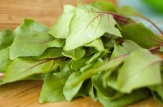 spinach high protein vegetable