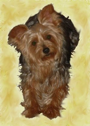 Maty... my sister's precious girl, lost to an accident several years ago. I still miss her!