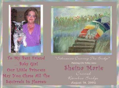 Sheina's Memorial