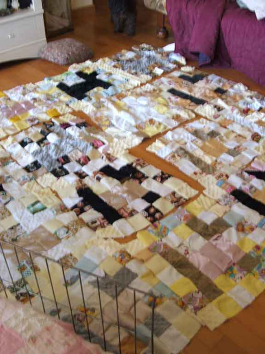 The quilt practically covered the floor of my living room when I started to lay it out!