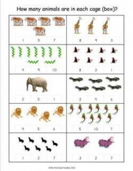math worksheet : animal worksheet new 630 animal math worksheets kindergarten : Animal Math Worksheets