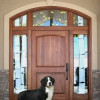 Doorbell for Dogs : Housebreaking Your New Puppy or Dog