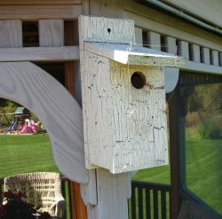 Our most successful birdhouse mounted on our gazebo. It is near our small pond and trees, but not too close to low bushes.