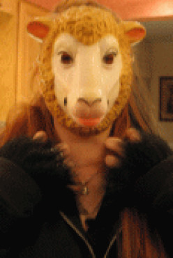 Wolf in Sheep's Clothing Halloween Costume