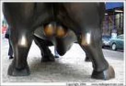 Bull Balls - A Tasty Treat