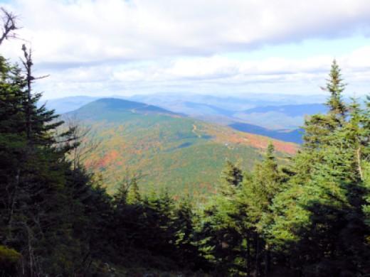 Foliage on Mt. Killington, Vermont