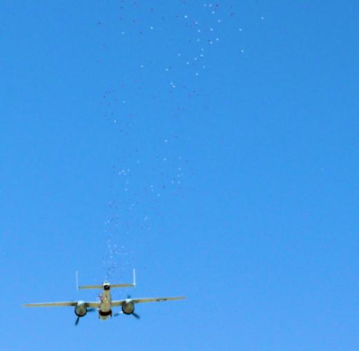 Palm Springs Aerial Museum Memorial Day Flower Drop