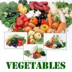 The Green and Colorful Vegetables