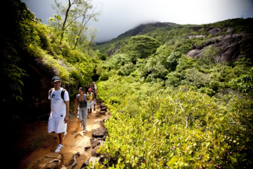 Take a half day hike along with one out of the many trails, it is the best way to explore the Morne Seychelles National Park.