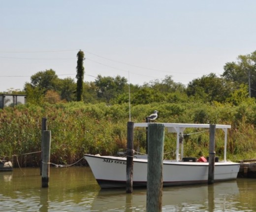 Another view of a fishing boat.
