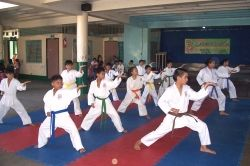 karate lesson plans