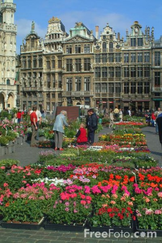 Brussels flower market Photographer: Ian Britton http://www.freefoto.com/browse/1401-00-0?ffid=1401-00-0