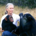 Jane Goodall; The Woman Who Redefined Man: Biography