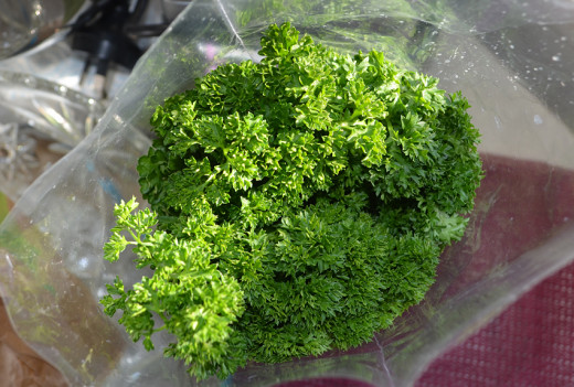 Parsley fresh from shop and ready for chopping