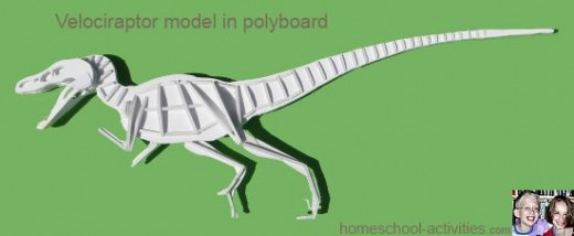 Using polyboard to make the skeleton