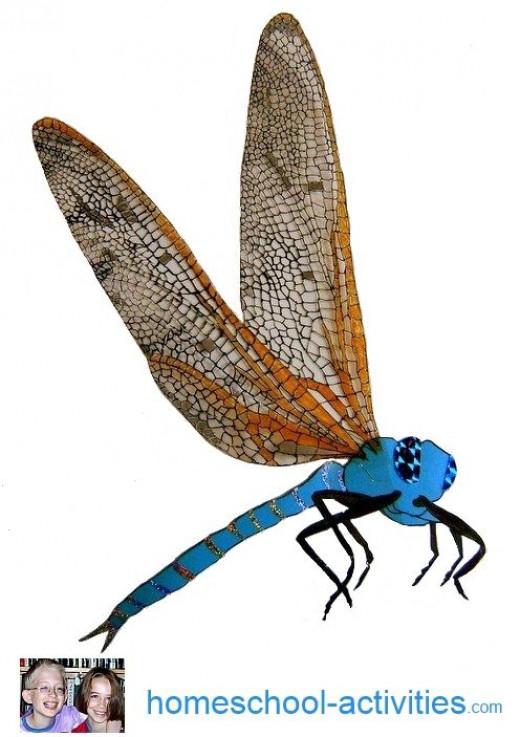 meganeura prehistoric dragonfly