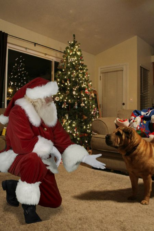 picture of santa in your house
